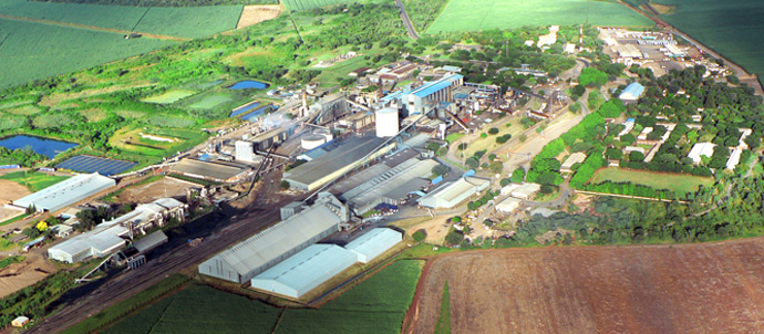 Hình ảnh nhà máy Thái Dương